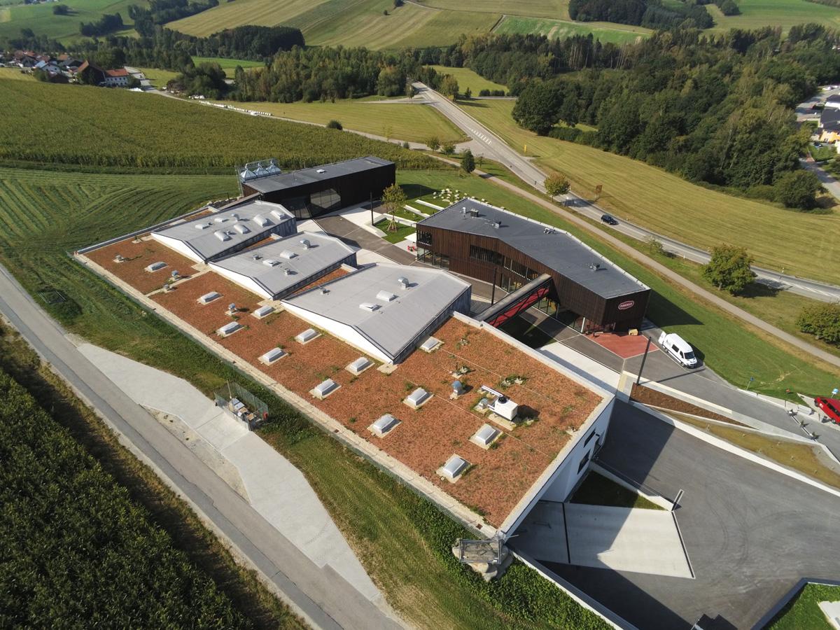 Hoffmann  Dachsanierung Spenglerei